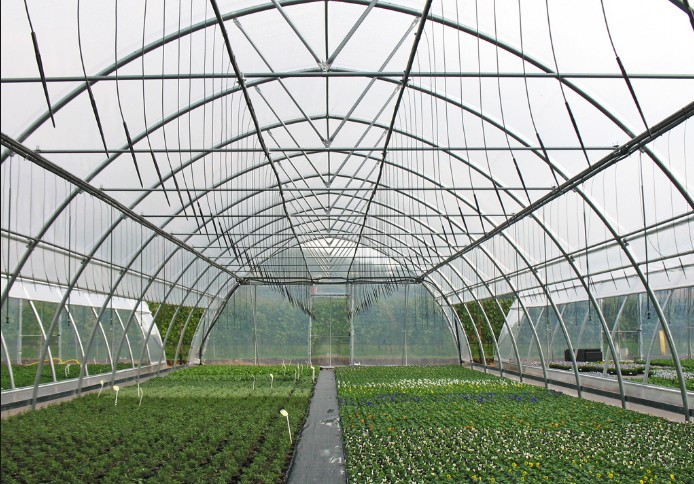 Factory Price Easily Installed Agricultural Greenhouse