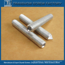 Tornillo de fijación de acero al carbono DIN913 DIN914