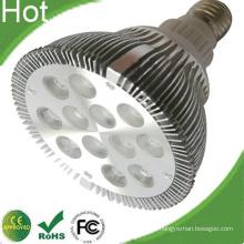 Silergy Power Lösung Bridgelux Chip LED PAR38 12W Lampe