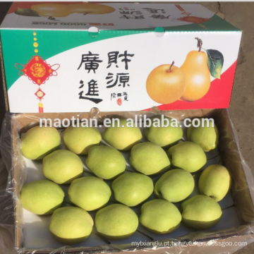 Ano 2016 New Season Shandong Pears