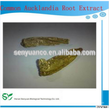 Meilleure vente Extrait de racine commune Aucklandia