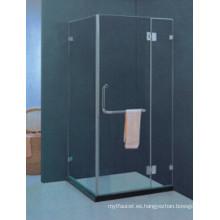 Diseño popular de vidrio templado recinto de ducha simple (H010)
