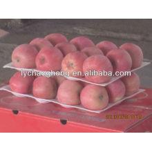 2013 neue Ernte Yantai fuji Apfel zum Verkauf