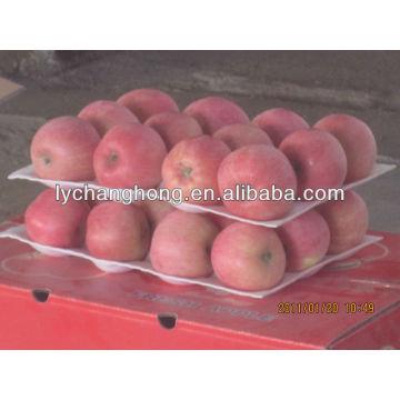 2013 new crop Yantai fuji apple for sale