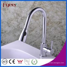 Fyeer Pull out Kitchen Sink Faucet with Head Button