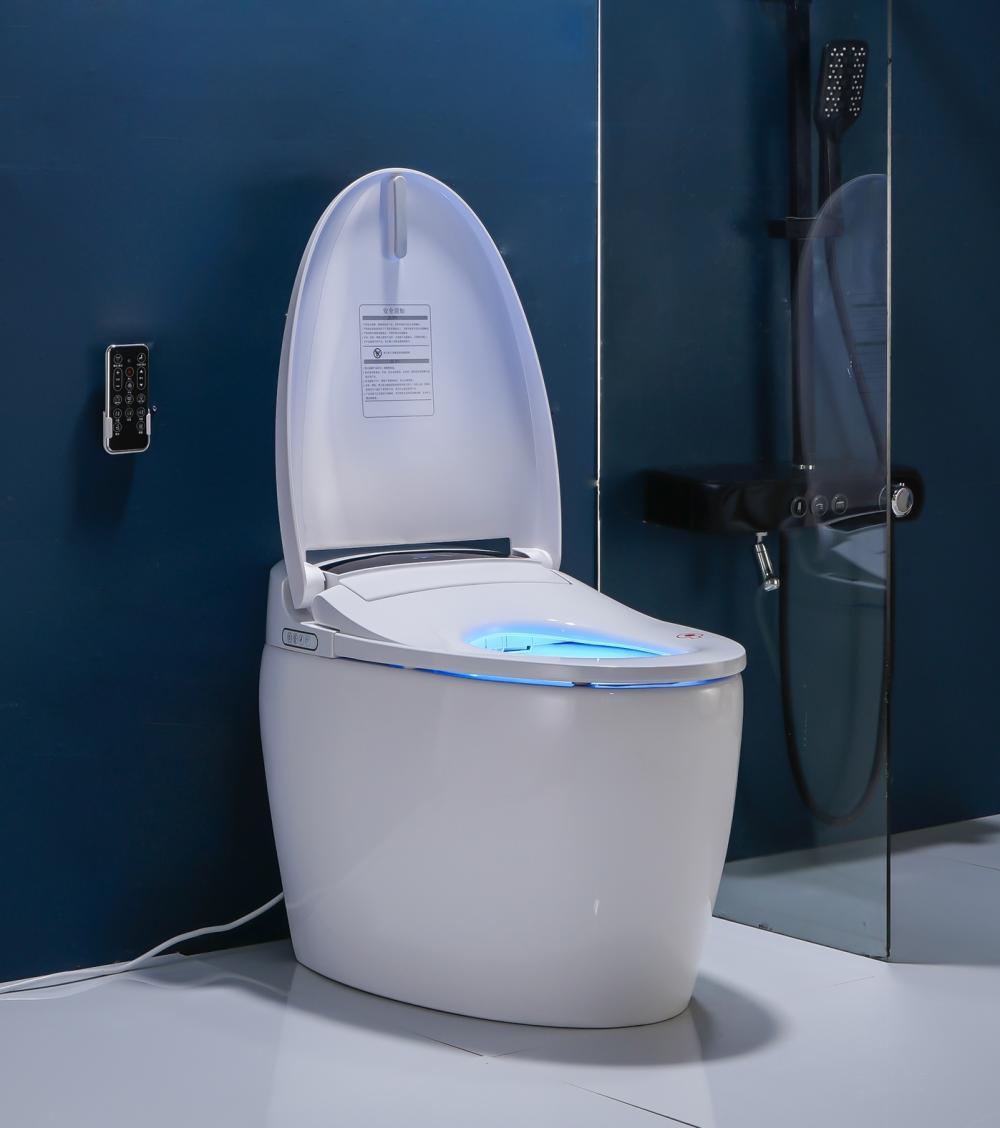 8102 2 Smart Toilet