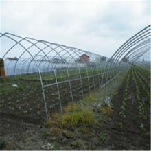 Facotory Vendas Diretas Greenhouse Hollow Section