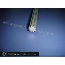 Haste de inclinação de perfil de alumínio para prata anodizada cega vertical