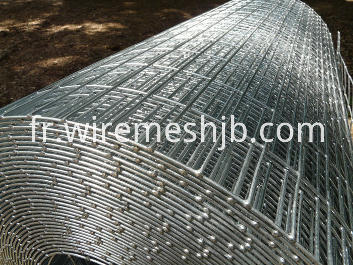 2''x 3''Welded Wire Fence