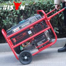 BISON (CHINA) OEM Marca Gasolina Gasolina Gerador de Energia Em estoque
