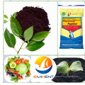 Alta calidad algas bio fertilizante mejor precio