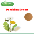 Dandelion Ro...