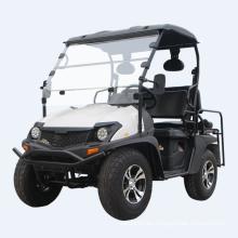 Carro de golf eléctrico eléctrico de 5KW UTV EEC