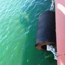 Amortisseur cylindrique en caoutchouc de pare-chocs marins durables pour le dock