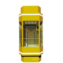 Fjzy Panoramic Cheap Elevator-Ascensor2040