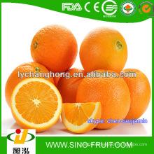 Frischer Nabel orange / Großhandelspreis orange