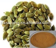 Hot selling Pumpkin seed Extract 4:1, 10:1 in stock, Herbal extract