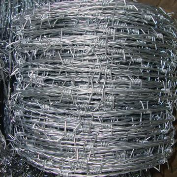 Hot Dipped Galvanized Barbed Wire roll
