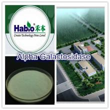 Alpha galactosidase, enzyme de qualité alimentaire
