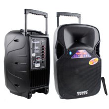 12 Zoll Portable Kunststoff Bluetooth Musik Lautsprecher mit UKW-Mikrofon F87