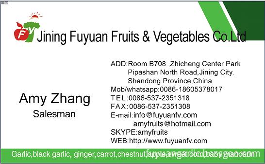 amy zhang namecard
