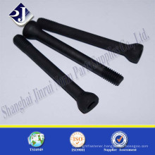 high quality non standard special screws black