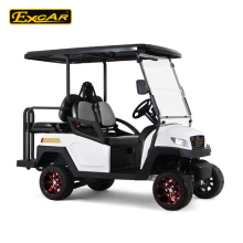 Electric Fuel Type and CE Certification Golf Cart 1-2 seats 2015 New design cheap electric golf cart