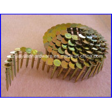 Smooth /Screw Shank Coil Roofing Nail with Competitive Price