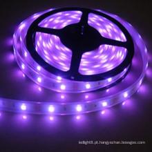 12V Flex 600 Leds Led sob luzes de gabinete Strip