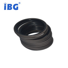 Low Temperature Resistant NBR +PTFE Glyd Ring