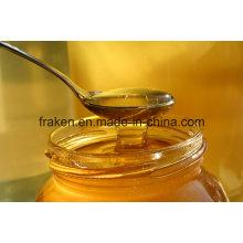 Miel au miel et miel à l'abeille de haute qualité