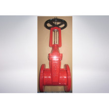 Rubber Encapsulated Wedge Gate Valve
