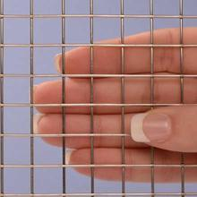 Stainelss Thép 304 Gopher Square Wire Mesh