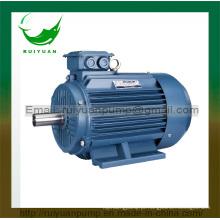 Motor elétrico assíncrono trifásico da eficiência elevada 2 Pólos 0.75W da série Y2