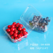 Biodegradable Plastic Eco-Friendly Fresh Fruit Container with Label