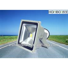 Подсолнечник под лампой среднего света наводнения / светодиодный настенный светильник CE ROSE