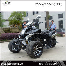 EEC Gasoline Racing Trike with 12inch Tyre 200cc 3 Wheel Motorcycle