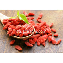 Certified Organic Bulk Wholesale Dried Red Goji Berries