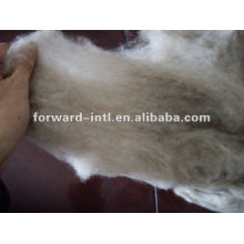 cachemire lanas fibra