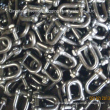 Shackle D Type, Bow Type, European Type, Us Type, JIS Type, E. Galvanized