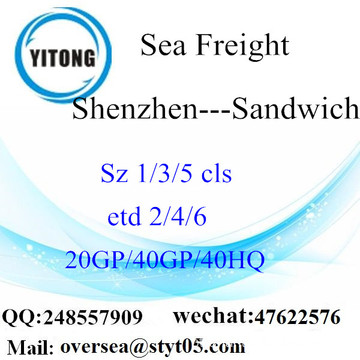 Shenzhen Port Sea Freight Shipping Para Sandwich