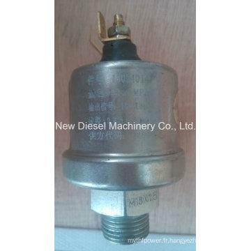 Capteur de pression d'huile de moteur de Weichai Engine (13024014)