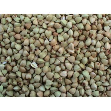 Chinesische Buchweizenkerne Yulin Herkunft (BW-007)