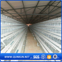 120 Birds Automatic Poultry Layer Cages Systems