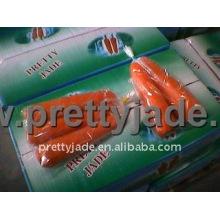 Chine exportent des carottes fraîches