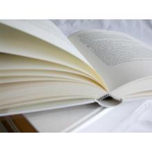 impression de livre de papier bible