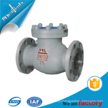 DIN cast iron lift check valve