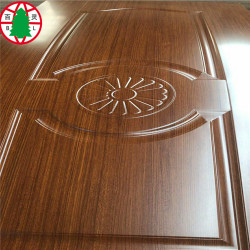 Interior Door Leaf Skin Panels  Door Skin