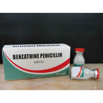 Manufacturer for β-lactam Antibiotics Benzathine Benzylpenicillin for Injection Penicillin supply to Serbia Manufacturer