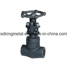 API 800 lb NPT valve en acier forgé en acier